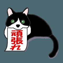 猫はあまりしゃべらない Ver 3(動いて応援)