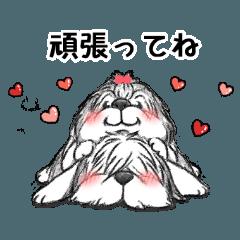 応援☆癒す☆楽しい☆もふもふぽん