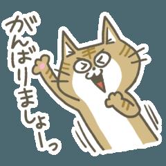 茶トラ猫ちゃんの応援スタンプ
