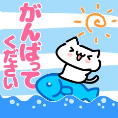 動く!となりのニャンコ【励まし夏Ver.】