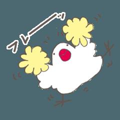 白文鳥 応援タイプ