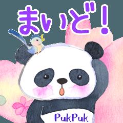 パンダのプクプク(関西弁)