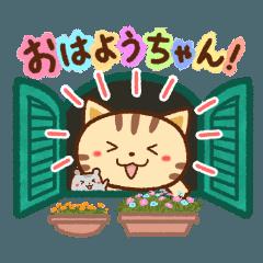 ネコちゃん ハムちゃん2